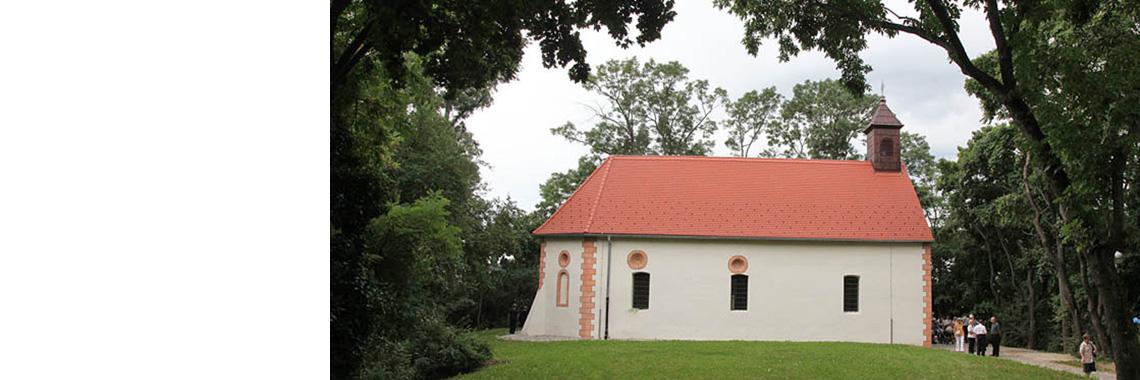 Proslava blagdana sv. Roka 2015.